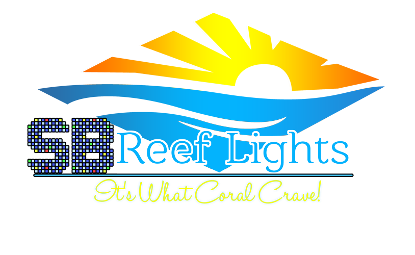 SB Reef Lights